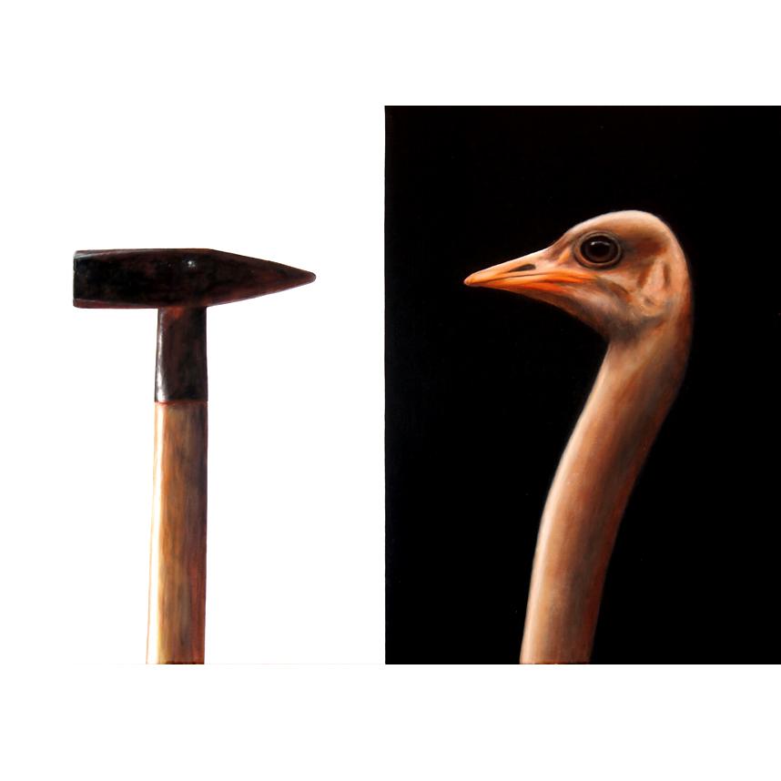 ostrich-3-2-vk