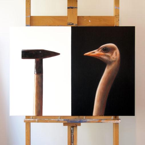 ostrich-3-2